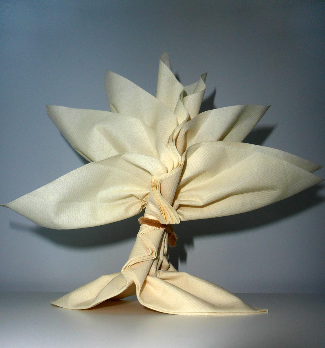 Lotus En Serviette De Papier : Explicative Pour Le Pliage De Serviette En Papier En Forme De Lotus